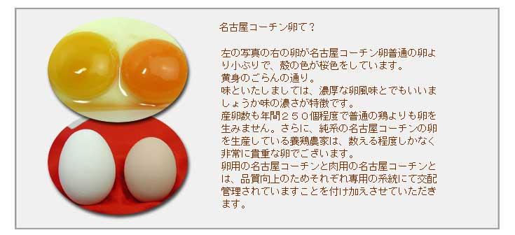 左の写真の右の卵が名古屋コーチン卵普通の卵より小ぶりで、殻の色が桜色をしています。黄身のごらんの通り。味といたしましては、 濃厚な卵風味とでもいいましょうか味の濃さが特徴です。産卵数も年間250個程度で普通の鶏よりも卵を生みません。さらに、 純系の名古屋コーチンの卵を生産している養鶏農家は、数える程度しかなく非常に貴重な卵でございます。卵用の名古屋コーチンと肉用の名古屋コーチンとは、 品質向上のためそれぞれ専用の系統にて交配管理されていますことを付け加えさせていただきます。