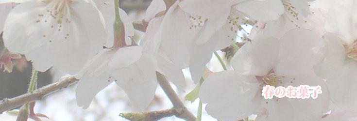 春の和菓子:名古屋コーチン卵お菓子 【菓宗庵】
