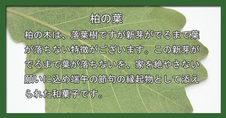 『柏餅』:愛知の手づくり和菓子処【菓宗庵】
