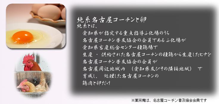 純系名古屋コーチンとは